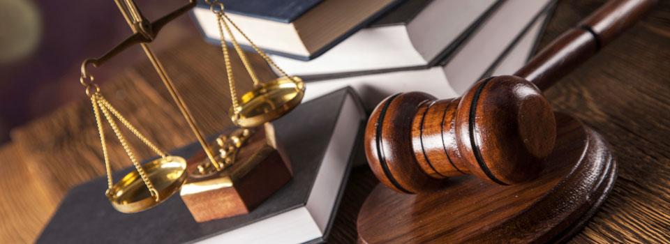 Volkov Law Practice Areas